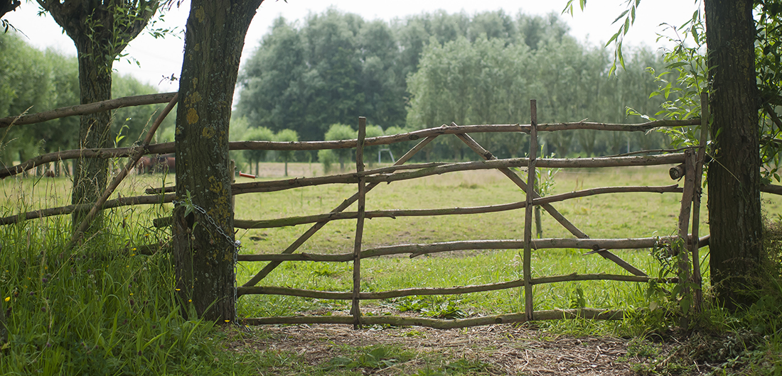 Wilgentenen hek